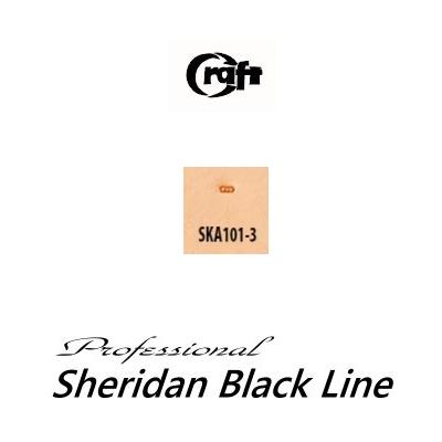 580-SKA101-3