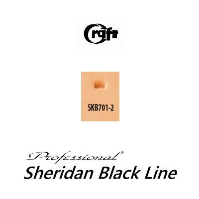 580-SKB701-2