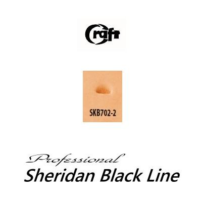 580-SKB702-2