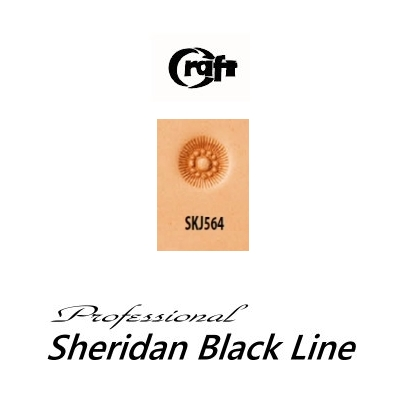 580-SKJ564