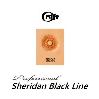 580-SKJ565